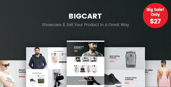 Test du thème WordPress Bigcart , voici notre avis