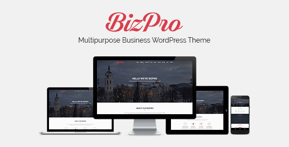 test BizPro - Onepage Multipurpose Business WordPress Theme