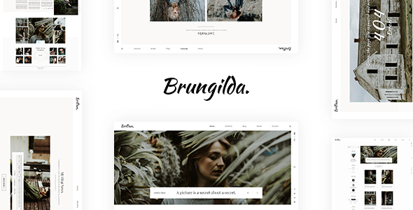 Test du thème WordPress Brungilda , voici notre avis