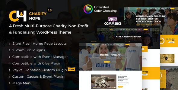 Test du thème WordPress Charity Hope , découvrez notre avis
