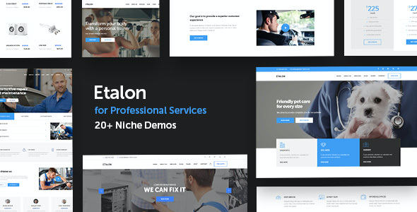 test Etalon - Multi-Concept Theme for Professional Services