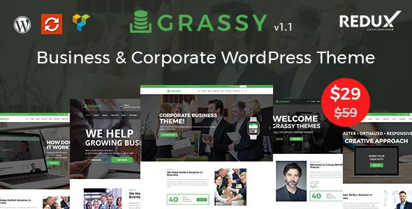 Test du thème WordPress Grassy Business , voici notre avis