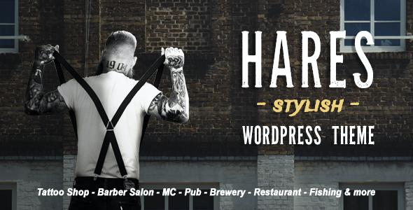 Test du thème WordPress Hares , voici notre avis