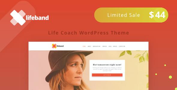 Test du thème WordPress Lifeband , découvrez notre avis