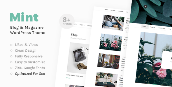 test Mint - A Beautiful WordPress Blog Theme