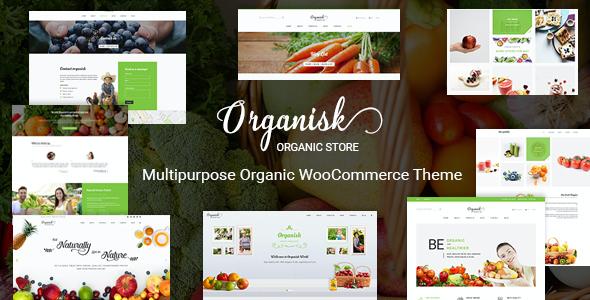 Test du thème WordPress Organisk , voici notre avis