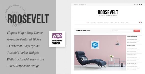 Test du thème WordPress Roosevelt , découvrez notre avis