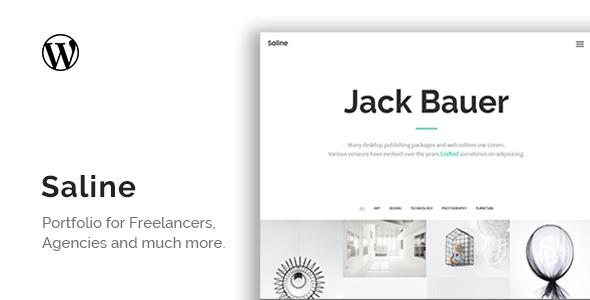 test Saline - Portfolio For Freelancers WordPress Theme