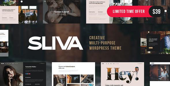 Test du thème WordPress Sliva , découvrez notre avis