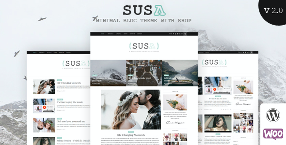 Test du thème WordPress Susa , voici notre avis