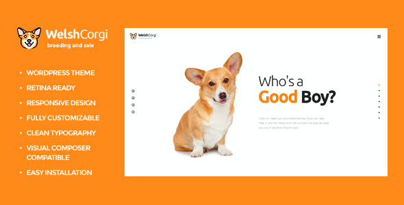 test Welsh Corgi | Dog Breeding and Sale WP Theme